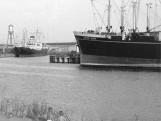 Two small children holding hands looking at docked cargo ships