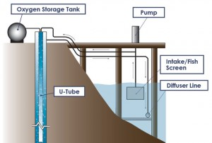 Schematic of water flow and process