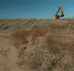 Antioch Dunes