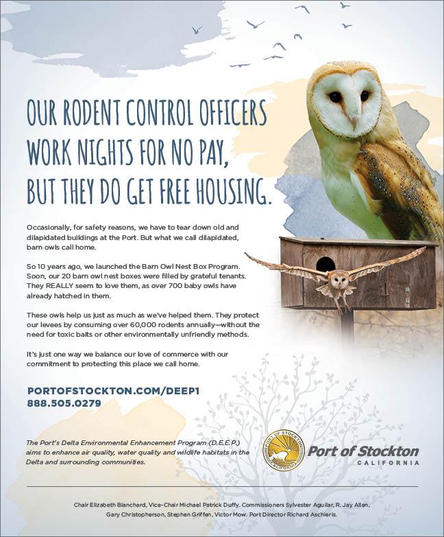 Delta Environmental Enhancement Program - Barn Owls