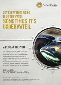 Peek at the Port Campaign awarded the Award of Distinction for an advertising campaign.